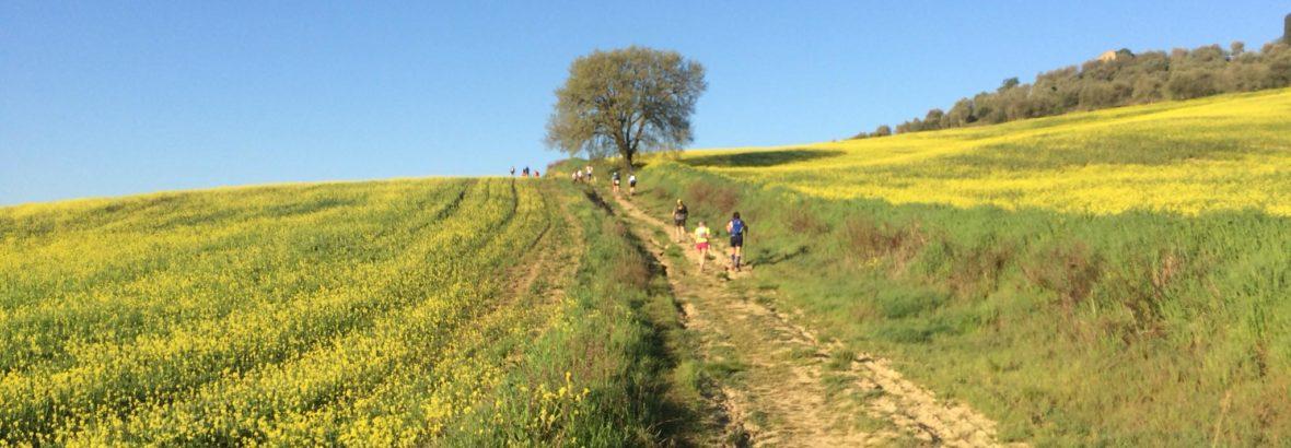 22 aprile 2018, Tuscany Crossing Valdorcia, i risultati e la galleria fotografica