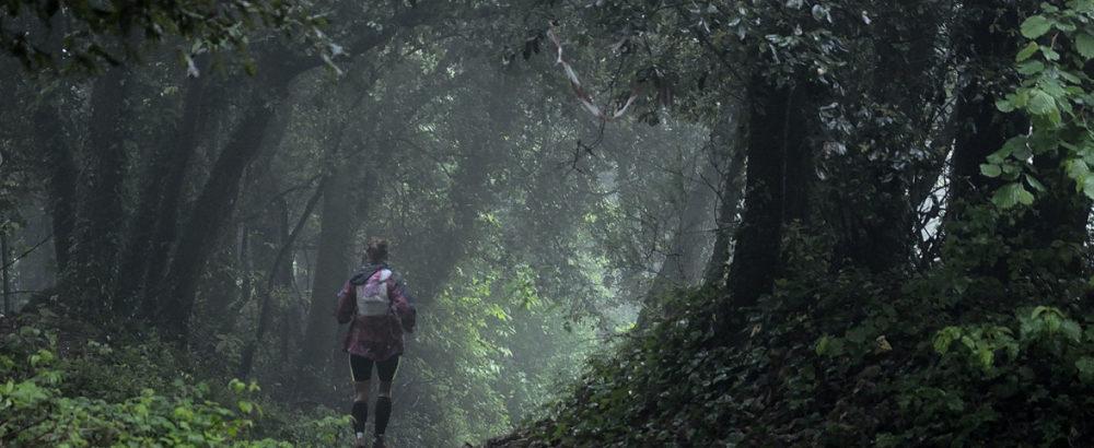 Penna Trail Run 2021